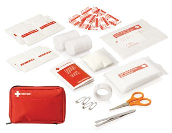 30 Piece First Aid Kit Carry Pouch