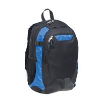 Boost Laptop Backpac