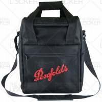 Cooler bag with 6 wi