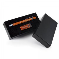 Pen/USB gift Set