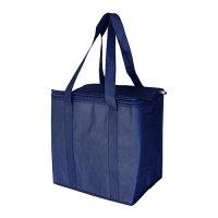 Non Woven Cooler Bag