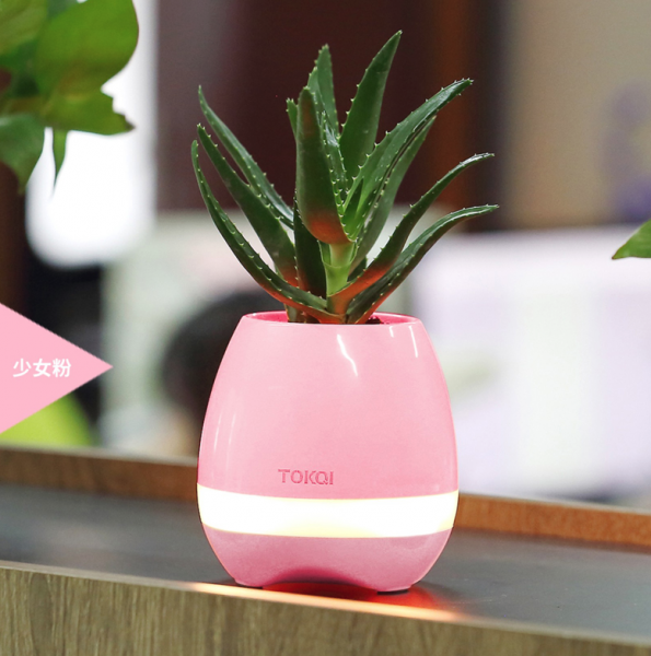 Bluetooth speaker Flower Pot